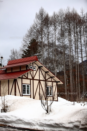 雪の中に建つ赤い屋根の家の素材 [FYI00133696]