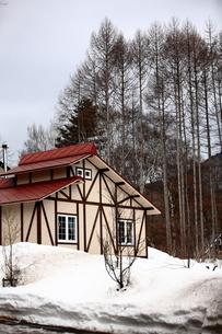 雪の中に建つ赤い屋根の家の写真素材 [FYI00133696]