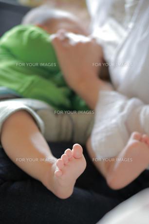 授乳中の赤ちゃんの写真素材 [FYI00133699]