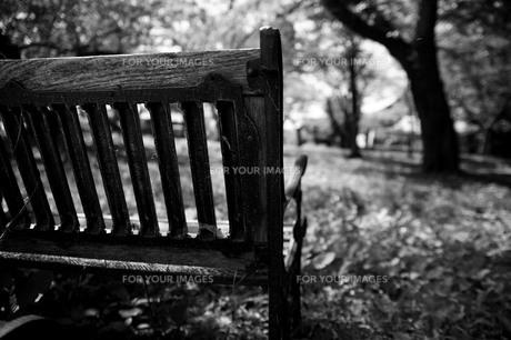 公園の古びたベンチの素材 [FYI00133710]