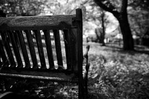 公園の古びたベンチの写真素材 [FYI00133710]