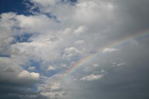 夏の空にかかる虹の素材 [FYI00133711]