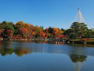 秋の写真素材 [FYI00134133]
