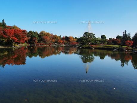 秋の写真素材 [FYI00134150]