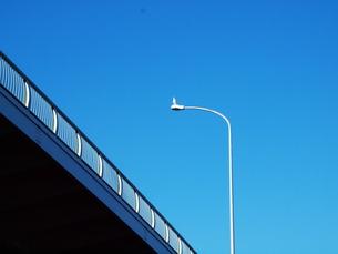 青空に映えるの写真素材 [FYI00134160]