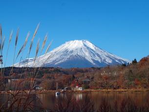秋の富士の写真素材 [FYI00134172]