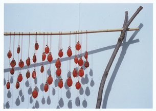 毎年恒例 / 被写体:干し柿作りの写真素材 [FYI00134219]