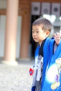 七五三参りの男の子の写真素材 [FYI00134615]
