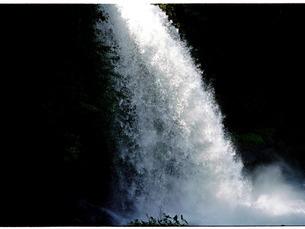 躍動する水しぶきの写真素材 [FYI00134674]