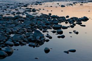 朝の河原の素材 [FYI00134766]