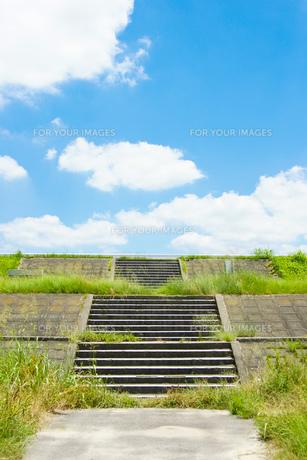 さぁ夏への素材 [FYI00134768]