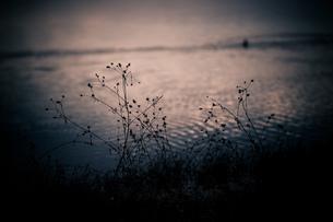 lake memoryの素材 [FYI00134805]