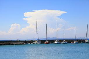 夏の空と海の写真素材 [FYI00134942]
