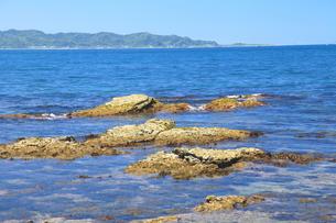 夏の海の写真素材 [FYI00134946]