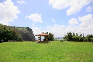 夏の空と公園の写真素材 [FYI00134953]