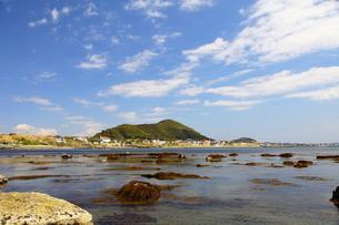 青い空と海の写真素材 [FYI00134955]