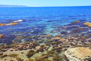 夏の海の写真素材 [FYI00134960]