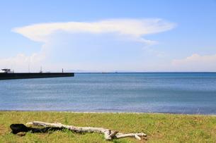 夏の空と海の写真素材 [FYI00134970]