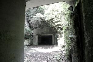 大房岬要塞の地下壕の写真素材 [FYI00135000]