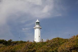 野島崎灯台と青い空の写真素材 [FYI00135081]