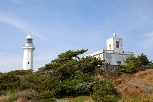 野島崎灯台と青空の写真素材 [FYI00135088]