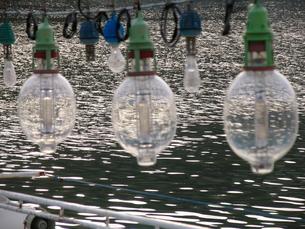 集魚灯と海の写真素材 [FYI00135317]