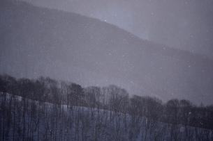 厳寒の朝の写真素材 [FYI00135458]