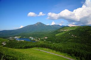 夏の白樺湖と蓼科山の写真素材 [FYI00135502]