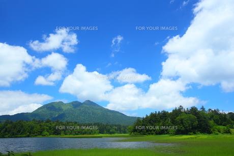 夏の尾瀬沼と燧ヶ岳の写真素材 [FYI00135504]