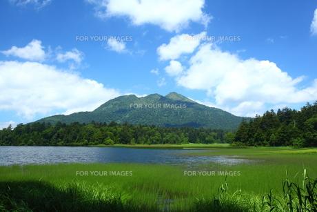 夏の尾瀬沼と燧ヶ岳の写真素材 [FYI00135507]