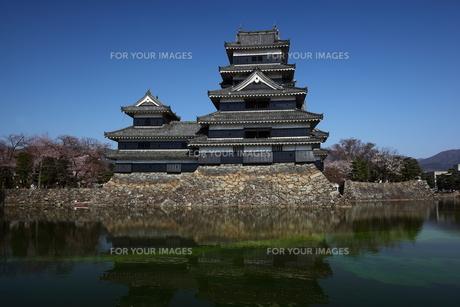 快晴の松本城の写真素材 [FYI00135532]