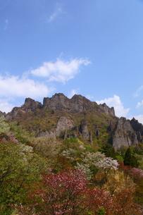 春の妙義山の写真素材 [FYI00135535]
