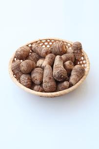 里芋の写真素材 [FYI00135549]