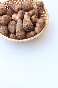 里芋の写真素材 [FYI00135551]