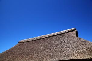 かやぶき屋根の写真素材 [FYI00135715]