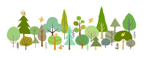 森と動物の素材 [FYI00136063]