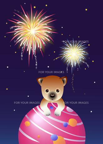 柴犬の夏祭りの写真素材 [FYI00136078]