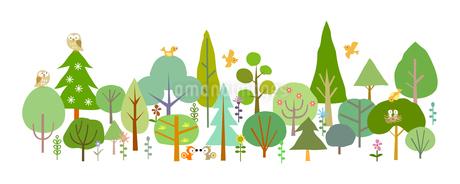 森と動物-春の素材 [FYI00136079]