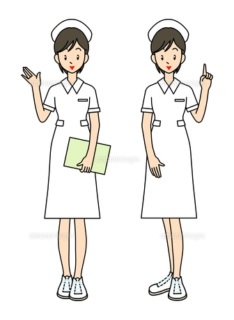 看護師ー2ポーズの写真素材 [FYI00136083]