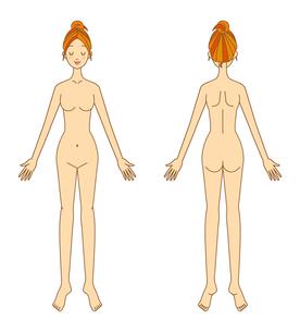 女性の体の写真素材 [FYI00136100]