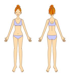 女性の体の素材 [FYI00136123]