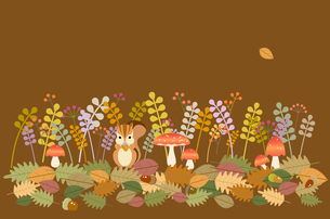 森の秋の素材 [FYI00136162]