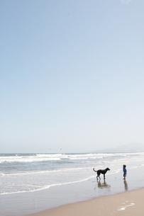 海岸で犬と遊ぶこどもの写真素材 [FYI00136262]