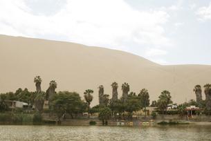 砂漠のオアシスの写真素材 [FYI00136315]