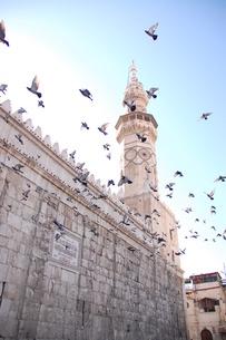 ウマイヤド・モスクと飛び立つ鳩。の写真素材 [FYI00136377]