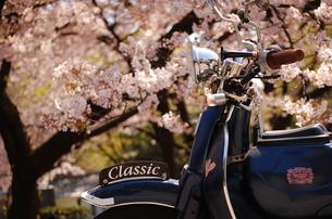 桜とバイク。の素材 [FYI00136392]
