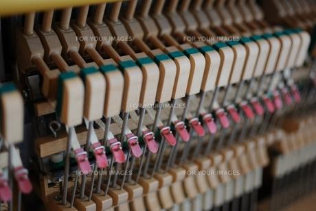 ピアノ-ハンマーアクションの写真素材 [FYI00136522]