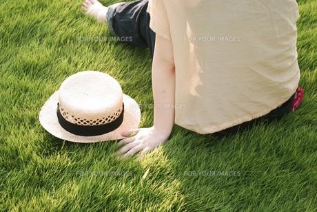 麦わら帽子の素材 [FYI00137691]