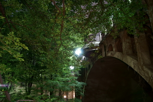 夜の音無親水公園めがね橋の写真素材 [FYI00137976]