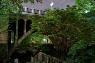 夜の音無親水公園めがね橋の写真素材 [FYI00137992]